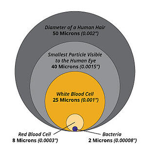 Micron-size-reference